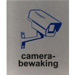 Camera bewaking rvs Pictogram